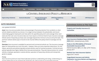 Auto Insurance Report