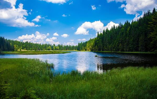 A New View on Competitive Intelligence Software: Intelligence Lakes and Intelligence Warehouses